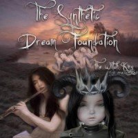 the synthetic dream foundation - witch king 1st