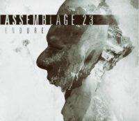 :Music Review: Assemblage 23 – Endure